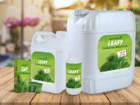 Süs Bitkileri Ve Ürünleri